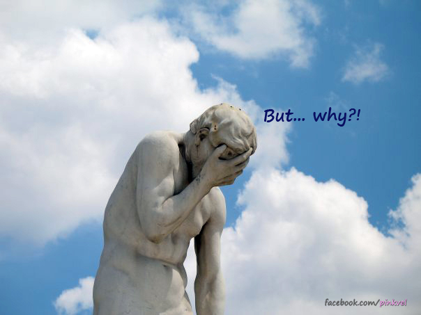 You are a WHAT? A Travel Blogger! But…. *why*??!
